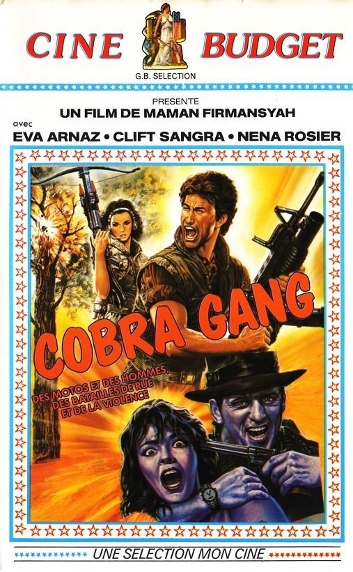 Cobra Gang / Violent Killer