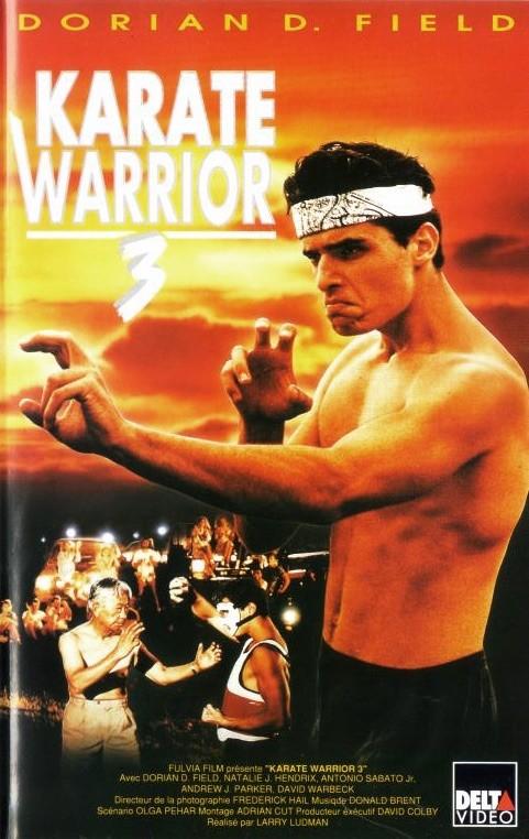 Karaté Warrior 3