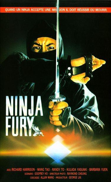 Ninja Fury