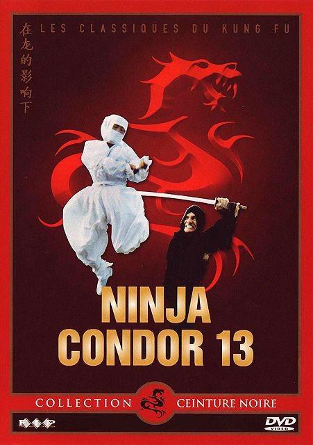 Ninja Condor 13