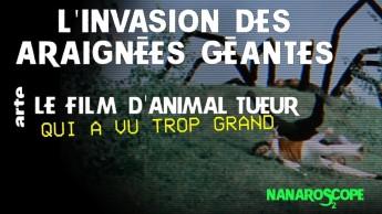 Nanaroscope - Saison 2 Episode 2 : L'invasion des araignées géantes