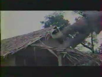 Mannequin en mousse en bois
