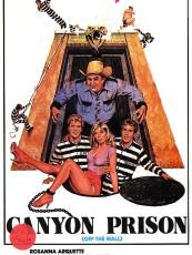 CANYON PRISON