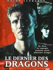LE DERNIER DES DRAGONS