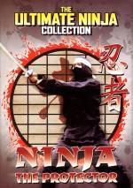 Ninja's Terror