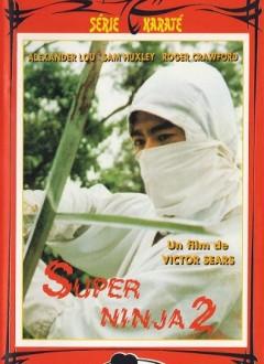Super Ninja 2