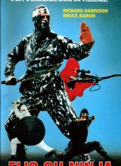 Flic ou Ninja