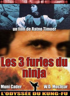 Les 3 Furies du Ninja