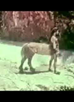 Un centaure à mulette que le réalisateur, dans un éclair de lucidité, a choisi de ne pas faire marcher, hélas.