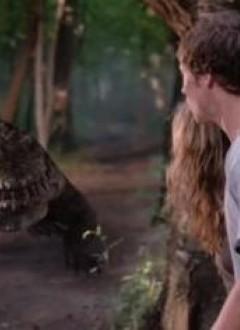 Mon Dieu, des crocodiles partout !