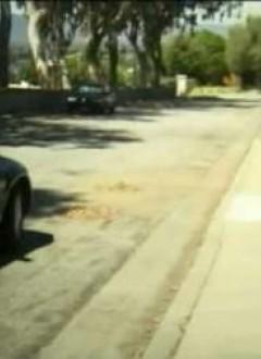 Au loin, la voiture l'emmène vers un destin inéluctable...