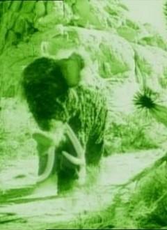 Un authentique moumouth préhistorique.