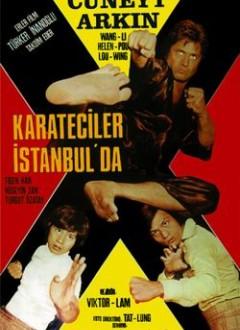 L'affiche turque du film