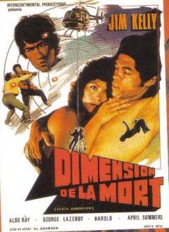 Affiche française...avec carrément la tête du vrai Bruce Lee ! (Ha oui, y'en a qui n'ont peur de rien)